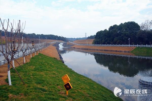 浏水圭调圭塘河生态引水工程全面完工星辰在线长沙新闻网长沙新闻门户