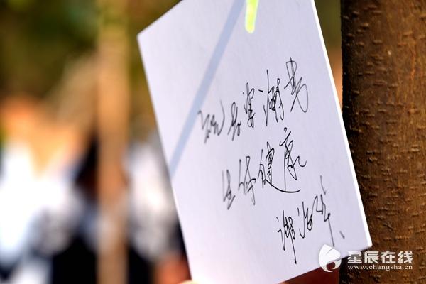 """获得者谢海华在心愿卡上写下""""祝谢芳身体健康"""",""""芳华之恋""""的图片"""