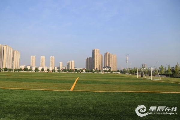 被利用起来建成足球场图片